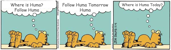 In all panels, Garfield is lying down and a thought bubble is coming from his head. They say: Panel 1: Where is Huma? Panel 2: Follow Huma Tomorrow. Human Panel 3: Where is Huma Today?