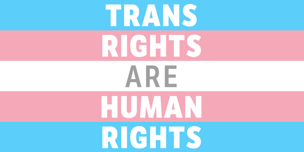 A blue, pink, white, pink, blue striped flag symbolizing transgender pride. Superimposed is the phrase: Trans Rights Are Human Rights